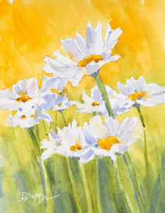 daisies cindy briggs 10 unique ideas