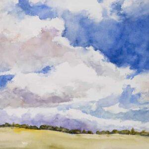 Ranch Sky 763x1024 copy